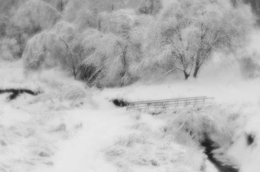 Winter by Kirill Puchkov