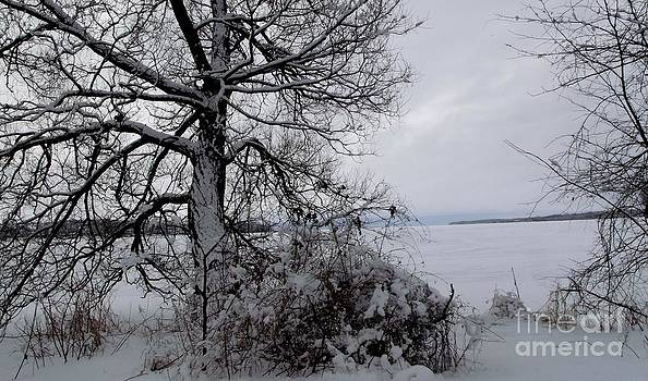 Gail Matthews - WINTER Lake VIEW FROM ASHORE