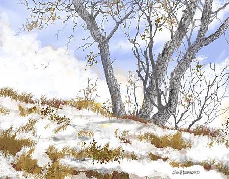 Jim Hubbard - Winter Landscape-2