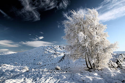 Winter Landscape by Grant Glendinning