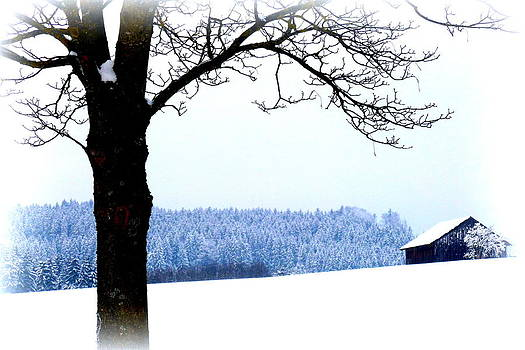 Winter Landscape in Bavaria by The Creative Minds Art and Photography