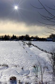 Sophie Vigneault - Winter Landscape