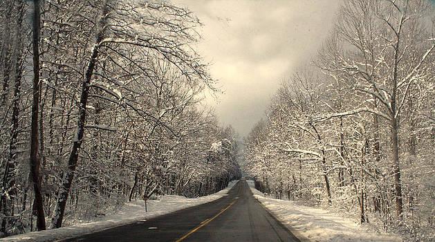 Winter Lane by Heather Palmer