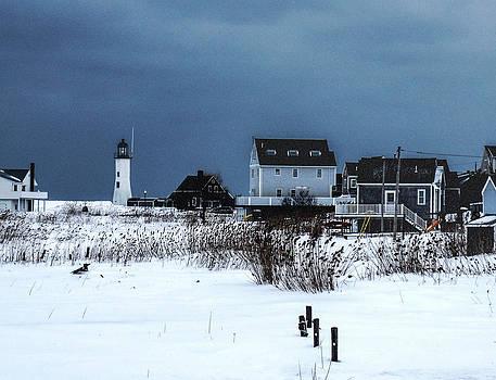 Winter Light by Carol Sutherland
