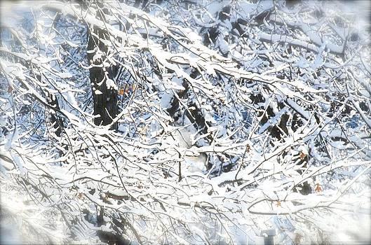 Christine Belt - Winter Memories No. 2