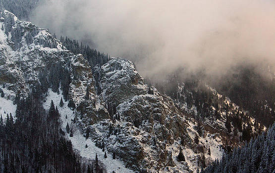 Winter Mist by Dimitar Smilyanov