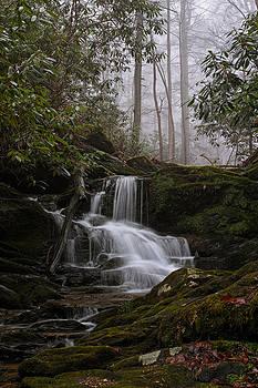 Winter Mist by Tim Devine