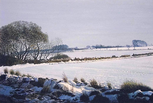 WINTER LANDSCAPE MONTROSE  to FORFAR ROAD SCOTLAND by Rodger Insh