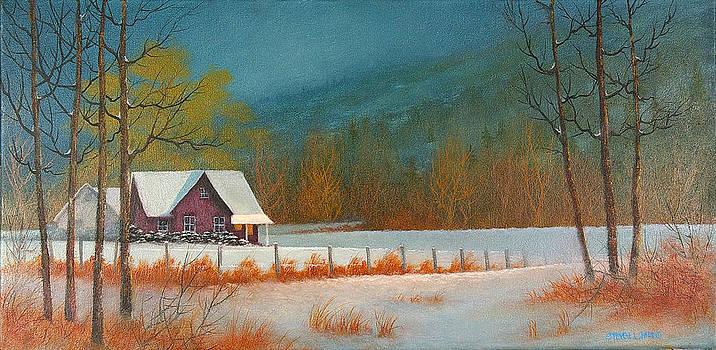 Winter Morn by Steven  L Parris