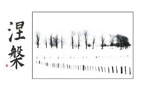 Winter Nirvana  by Andrea Kollo