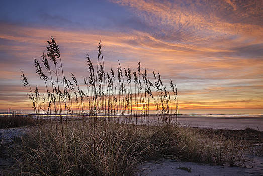 Winter Oats by Steve DuPree