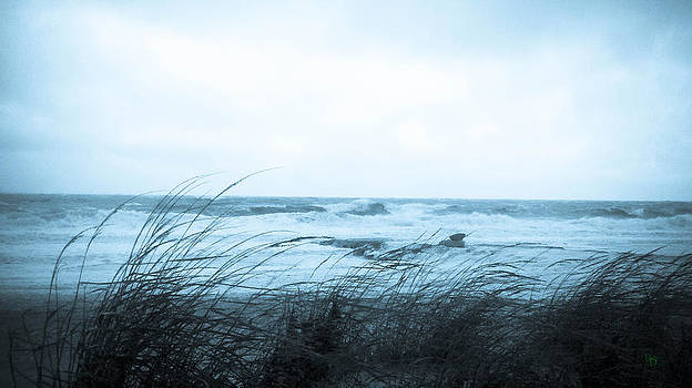 Winter Ocean by L and D Design Photography