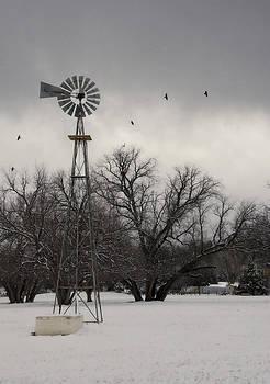 Saija  Lehtonen - Winter on a Farm