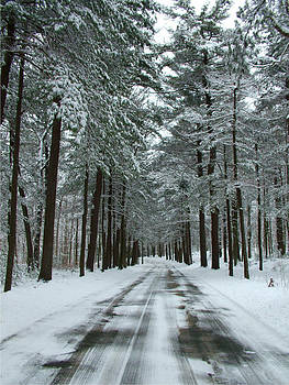 Winter on Mohegan Park Road by Geoffrey McLean