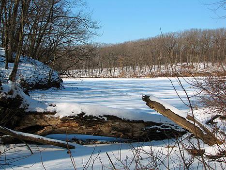 Winter On Sauk Lake 2 by Cedric Hampton