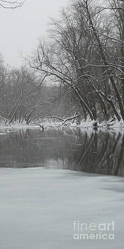Winter on the Embarras by Cindy Bettinger