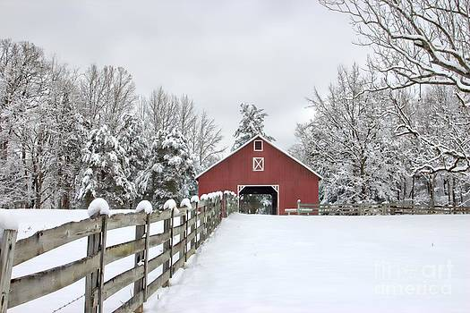 Winter on the Farm by Benanne Stiens