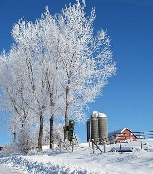 Winter on the Farm by Lori Frisch