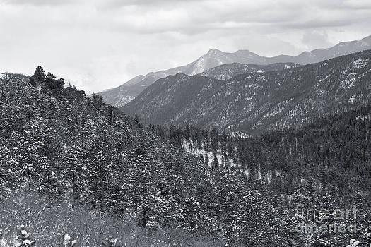 Steve Krull - Winter on Ute Pass