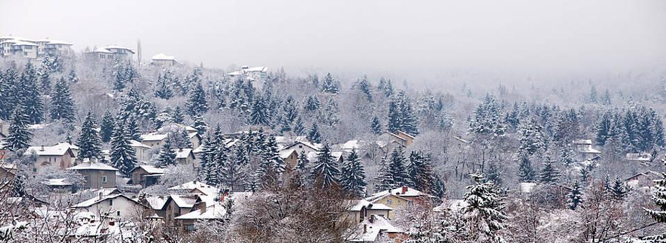Winter panorama by Svetoslav Radkov