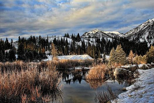 Winter Paradise by Gene Praag