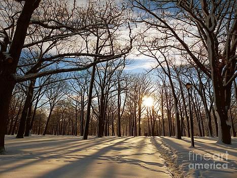 Christine Stack - Winter Park Sunrise with Snow