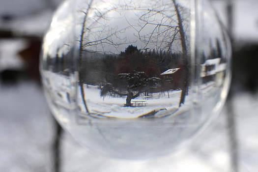 Cathie Douglas - Winter Picnic Spot