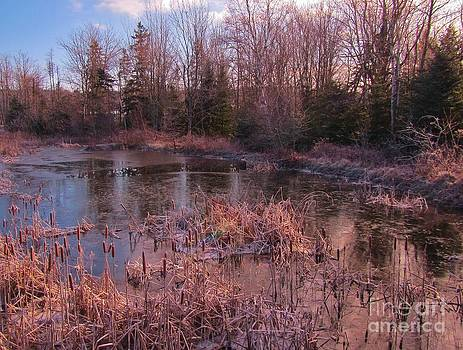 John Malone - Winter Pond Landscape