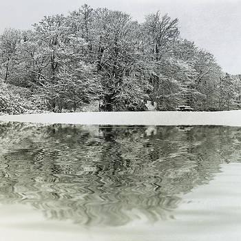 David Pringle - Winter Reflection