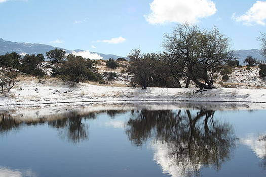 Winter Reflections by David S Reynolds
