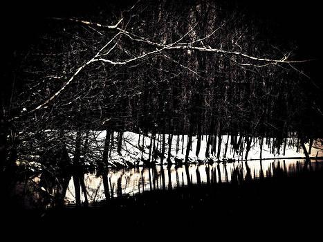 Kevin D Davis - Winter Reflections