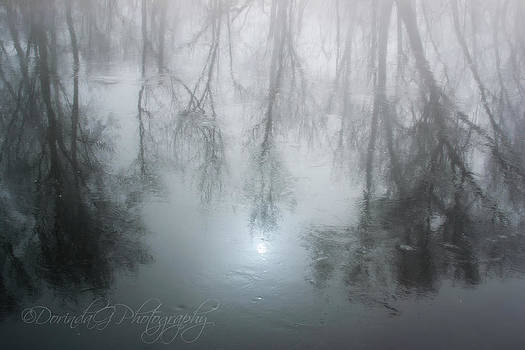 Winter Reflecton by Dorinda Grever