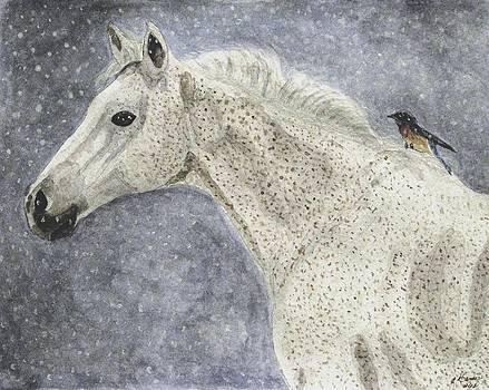 Angela Davies - Winter Rider