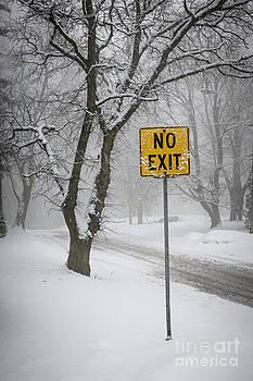 Elena Elisseeva - Winter road during snowfall III