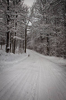 Winter Road by Robert Hellstrom