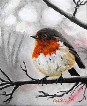 Winter Robin by Caroline Cunningham