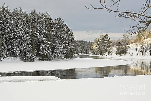 Winter Scene by Janique Robitaille