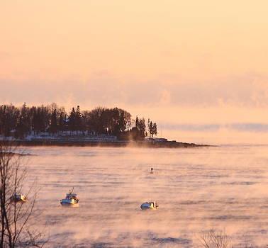 Winter Sea Smoke at Sunrise by Dana Moos