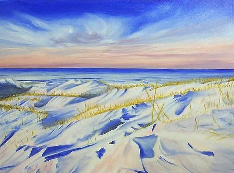 Winter Seashore by Phillip Compton