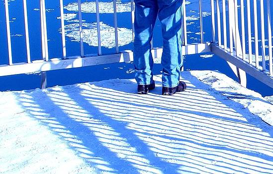 Julie Grandfield - Winter Shadows