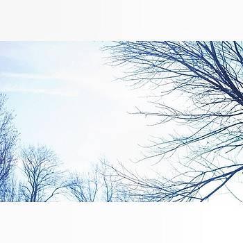 Winter Skies by Patrick Jay