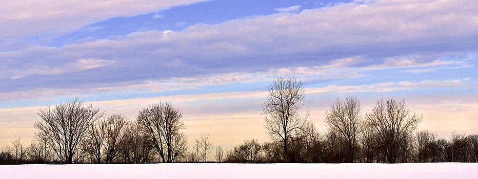 Winter Sky 2 by Kelly E Schultz