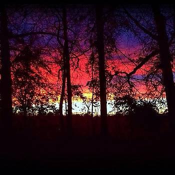 Winter Sky by Jeff Madlock