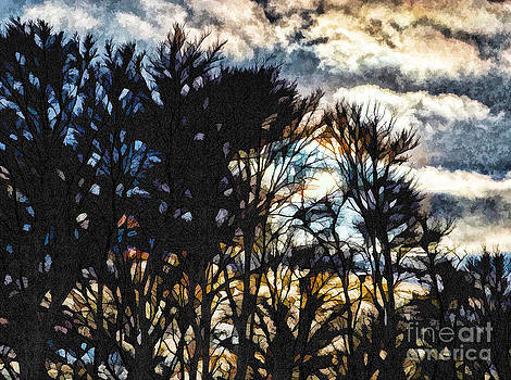 Winter Sky by Mary Underwood