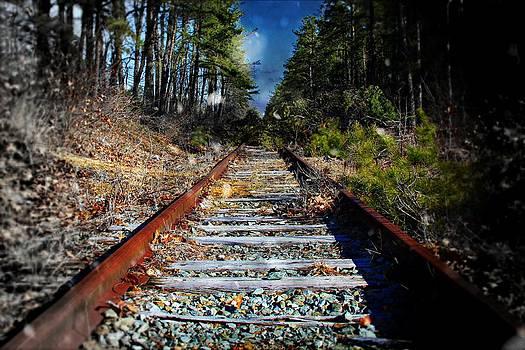 Winter Sky Train Tracks by Jessica Cirz