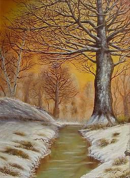 Winter snow landscape - East Midlands woods by Gianluca Cremonesi