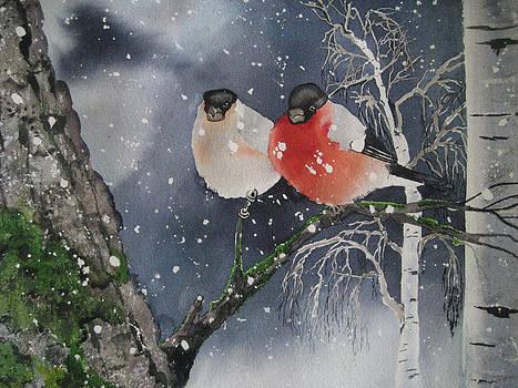 Winter by Stephanie Zobrist