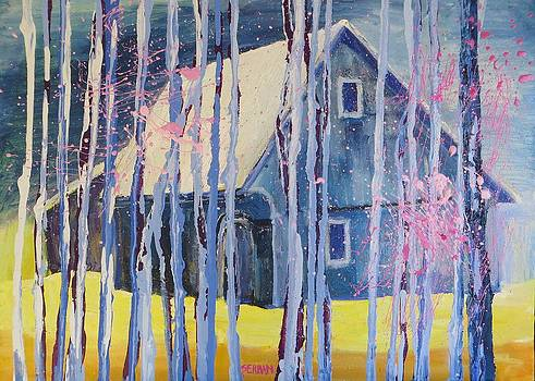 Winter Storm by Blanche Serban