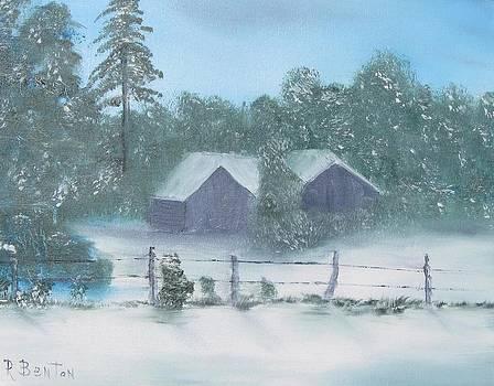 Winter Storm In Georgia by Robert Benton