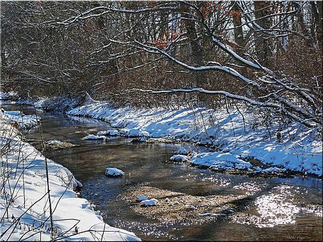 Winter stream by Mikki Cucuzzo